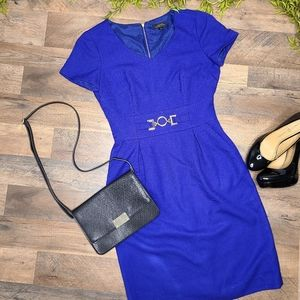Tahari • Royal Blue Pencil Dress with Gold Accents